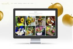 saino web design portfolio desktop